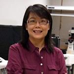 Prof. Emily WANG